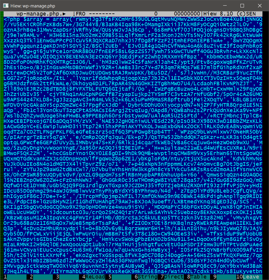04-09-16-1-encoded-malware-view.png